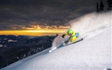 Title:Skier on downhill-Sports Poster Wallpaper Views:655