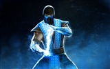 Title:Sub zero mortal kombat-2016 Game HD Wallpaper Views:724