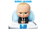 Title:The Boss Baby 2017 Animation Film Wallpaper 05 Views:1240