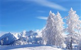 Title:Winter hoarfrost mountains freshness air-2016 Nature HD Wallpaper Views:892