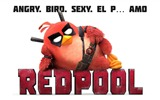 Title:Angry birds redpool-Movie Posters HD Wallpaper Views:688