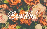 Title:Beautiful flower-Text Artistic Design HD Wallpaper Views:856