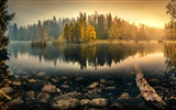 Title:Dawn autumn forest lake-Nature Scenery Wallpaper Views:284