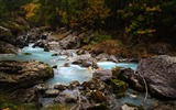 Title:Forest stream rivers-Nature High Quality HD Wallpaper Views:969