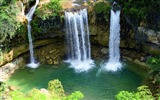 Title:Forest waterfall rivers-Nature High Quality HD Wallpaper Views:1154