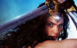 Title:Gal gadot wonder woman-Movie Posters HD Wallpaper Views:1296