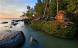 Title:Rocks coast moss water trees-Nature High Quality HD Wallpaper Views:975