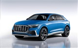 Title:2017 Audi Q8 Concept Auto Poster HD Wallpaper 02 Views:776
