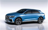 Title:2017 Audi Q8 Concept Auto Poster HD Wallpaper 03 Views:706