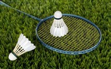 Title:Badminton grass field-Sports Poster HD Wallpaper Views:706