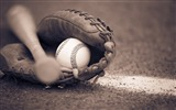 Title:Baseball bat and glove-Sports Poster HD Wallpaper Views:553