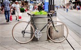 Title:Bike leaned beside street-Cities Photography HD Wallpaper Views:931