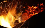 Title:Burning coal fire close-up-Life Photography HD Wallpaper Views:266