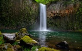 Title:Rocks covered green moss near waterfalls-2016 Scenery High Quality Wallpaper Views:150