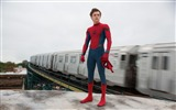 Title:Spider man homecoming-2017 Movie HD Wallpaper Views:879
