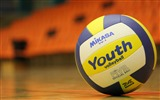 Title:Volleyball balls sports-High Quality HD Wallpaper Views:251