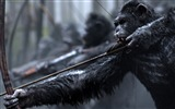 Title:War for the planet of the apes-2017 Movie HD Wallpaper Views:650