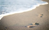 Title:Beach water steps sand-High Quality Wallpaper Views:854