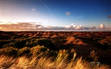 Title:Germany Spiekeroog Island Nature Landscape Wallpaper 02 Views:491
