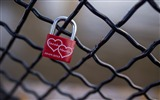 Title:Love bridge fence lock-Valentine 2017 HD Wallpaper Views:972