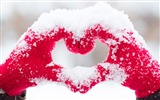 Title:Love heart snow hands-High Quality HD Wallpaper Views:458