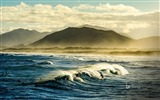 Title:Santa Catarina Surfers on Florianopolis-2017 Bing Desktop Wallpaper Views:695