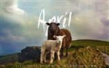 Title:April 2017 Calendar Desktop Themes Wallpaper Views:2178