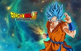 Title:Dragon Ball Super Anime Design HD Wallpaper Views:412