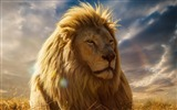Title:Lion king-2017 Movie Wallpaper Views:1004