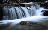 Title:Spring forest waterfall-Windows 10 Desktop Wallpaper Views:581