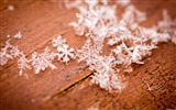 Title:Winter snowflake closeup-Windows 10 Desktop Wallpaper Views:577