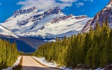 Title:Banff national park snowy mountains-Nature Scenery Wallpaper Views:848