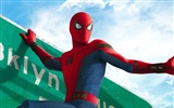 Title:Spider Man Homecoming-2017 Movie HD Wallpapers Views:433