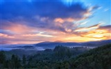 Title:Forest sunrise clouds-Beautiful landscape wallpaper Views:628