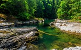 Title:Mountain forest stream-Scenery HD Wallpapers Views:165