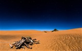 Title:Sahara desert-2017 High Quality Wallpaper Views:236