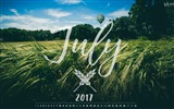 Title:Green Wheat Field-July 2017 Calendar Wallpaper Views:313