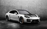 Title:Topcar porsche panamera stingray-High Quality Wallpaper Views:255