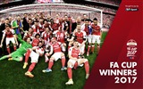 Title:Arsenal Club FA CUP WINNERS 2017 Wallpaper Views:377