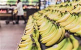 Title:Fruits grocery bananas market-Life HD Wallpaper Views:397