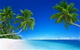 Title:Tropical beach paradise palms-Nature HD Wallpapers Views:139