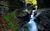 Title:moss gorge watkins glen state park falls-Scenery HD Wallpaper Views:577